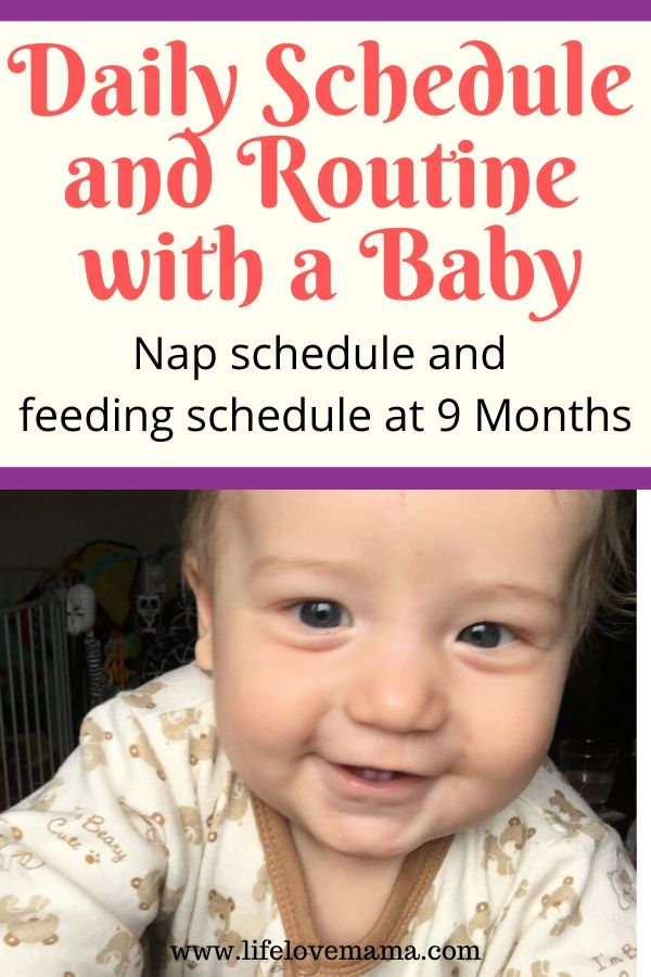 baby's nap and feeding routine and schedule at 9 months old