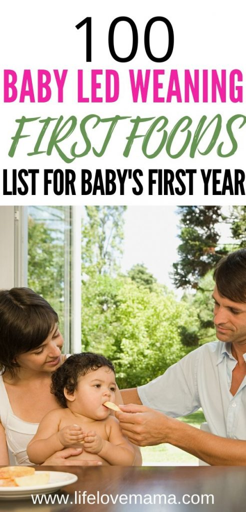 List of baby led weaning 100 first foods